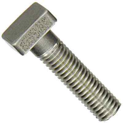 Square Bolt in Shamli